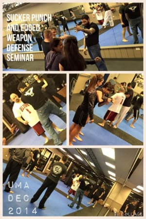Kids Martial Arts in Chicago - Ultimate Martial Arts - Sucker Punch and Edged weapon defense seminar