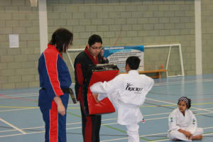 Martial Arts Training is a Positive Activity