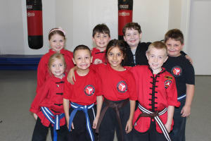 Kids Martial Arts in Rochester - Rochester Kung Fu And Fitness - Gold Team Seminar