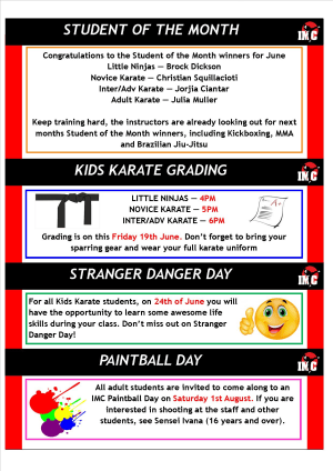 Kids Martial Arts  in St Clair, Kemps Creek & Hoxton Park - International Martial Arts Centres - IMC News 16th June 2015