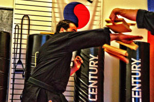 Kids Martial Arts in Cherry Hill - Arts and Leadership Academy - WUSHU TEST