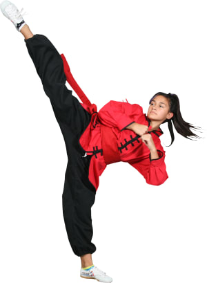 Kids Martial Arts in Rochester - Rochester Kung Fu And Fitness - Demo Team Performance and Free Kung Fu Class