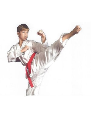 Kids Martial Arts in Cherry Hill - Arts and Leadership Academy - Back to School Schedule begins August 31st