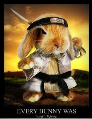 in St. Austell - Kernow Martial Arts - Happy Easter