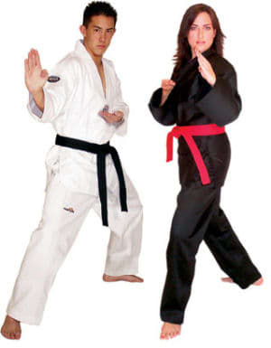 Adult Martial Arts near  Oakleigh - Challenge Martial Arts & Fitness Centre  - Why Martial Arts?