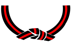 Kids Karate in Gainesville and Flowery Branch  - Rock Solid Karate - A Black Belt