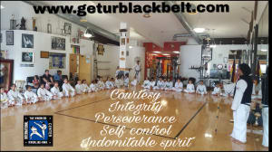 Kids Martial Arts in Davie and Cooper City - Traditional Taekwon-Do Center Of Davie - Taekwon-Do is So Much More than Kicking & Punching!