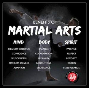 Kids Karate in Mesa - Shotokan Karate of Arizona - Traditional Shotokan Karate for any Age