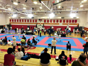 Kids Karate in Mesa - Shotokan Karate of Arizona - Chandler Arizona Karate Championships
