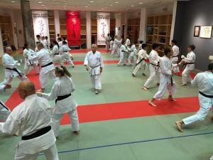 Kids Karate in Mesa - Shotokan Karate of Arizona - Kids Martial Arts and Adult Martial Arts Classes in Mesa and Gilbert!