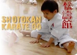 Kids Karate in Mesa - Shotokan Karate of Arizona - Flexibility