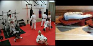 Kids Karate in Mesa - Shotokan Karate of Arizona - Muscular Strength