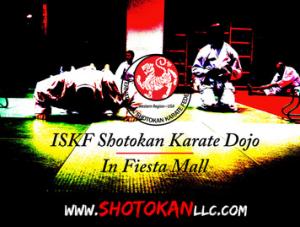 Kids Karate in Mesa - Shotokan Karate of Arizona - Best Way To Bust A Bad Mood