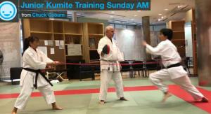 Kids Karate in Mesa - Shotokan Karate of Arizona - Junior Kumite Workout Sunday Morning