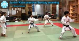 Kids Karate in Mesa - Shotokan Karate of Arizona - Youth Kata Practice