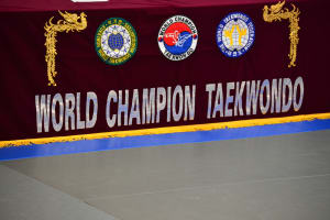 Taekwondo in Portland - World Champion Taekwondo Portland - Color Belt Testing Saltzman Location