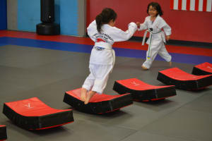 Taekwondo in Portland - World Champion Taekwondo Portland - BELT TESTING ON FOR DECEMBER 9,2016