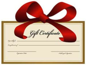 Kids Martial Arts in Sparks - Shin Gan Dojo - Gift Certificates Now Available!