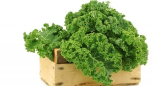 Personal Training in Concord - Individual Fitness - Health Benefits of Kale