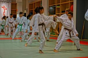 Kids Karate in Mesa - Shotokan Karate of Arizona - Shotokan Karate of Arizona | Best Kids Karate Classes In Mesa, Gilbert, and Chandler [Video]