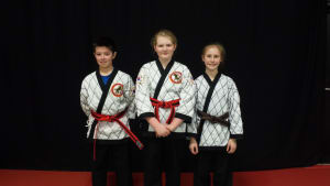 Kids Martial Arts in Hopedale - The Martial Instinct Self Defense - High Belt Promotions