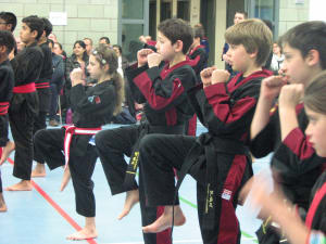 Martial Arts and your Child