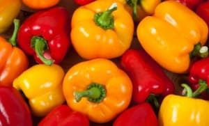Personal Training in Concord - Individual Fitness - 9 Incredible Health Benefits of Bell Peppers