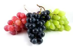 Grapes, a delicious antioxidant!