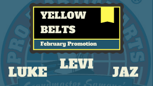 Luke, Levi & Jazz Test for Yellow Belt