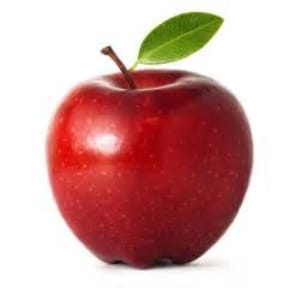 in Danbury - Connecticut Martial Arts - An Apple a Day...