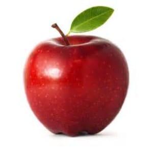 Kids Karate in Newtown - The Dojo Karate Training Center - An Apple a Day...