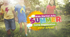 Kids Karate  in Levittown - Amerikick Martial Arts - 2017 Summer Camp