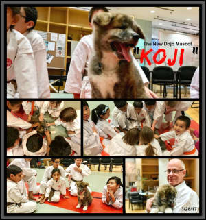 Kids Karate in Mesa - Shotokan Karate of Arizona - Karate Kids Love New Dojo Mascot