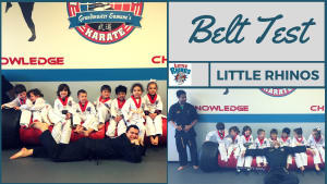 in Naperville - PRO Martial Arts Naperville - PRO Martial Arts Naperville - Little Rhino Belt Test Highlight Video