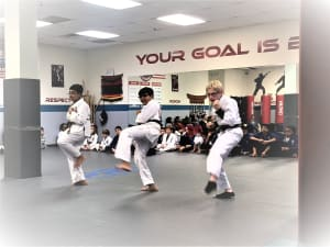 PRO Martial Arts Naperville Yellow Belt Highlight Video