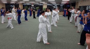 Kids Martial Arts in Bradenton - Ancient Ways Martial Arts Academy - Adult Martial Arts Students