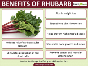 Personal Training in Concord - Individual Fitness - Health benefits of Rhubarb