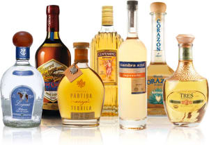Personal Training  in Los Gatos - Mint Condition Fitness - Does Tequila Help With Weight Loss?