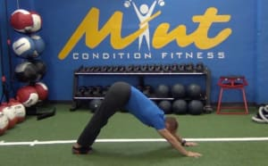 Personal Training  in Los Gatos - Mint Condition Fitness - [VIDEO BLOG] The 5 Most Effective Exercises to Start Your Day