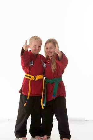 Kids Martial Arts  in Troy  - Denny Strecker's Karate - Practice Your Karate At Home
