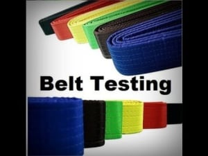 Kids Martial Arts  in Cedar Park - The Mat Martial Arts - September Rank Testing