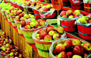 Personal Training in Concord - Individual Fitness - 7 Health Benefits of Apples