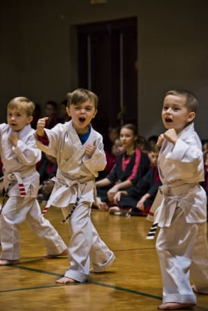 Image result for REASONS TO ENROLL YOUR CHILD IN KARATE