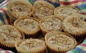 Cranberry Quinoa Mini Muffins
