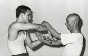 """Energy Drills and their use in """"Combative"""" Martial Arts"""
