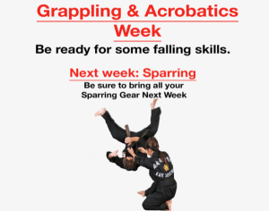 in Houston - Meyerland Martial Art Center - Grappling & Acrobatics Week!