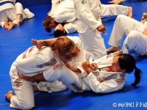 Karate vs. Brazilian Jiu-Jitsu