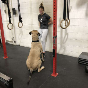CrossFit in  Lake Forest - CrossFit Lake Forest - Meet our March Athlete of the Month - Charlotte Van Schooten