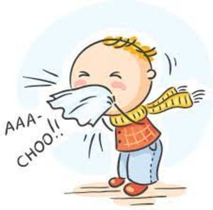 My Personal Natural Cold and Flu Prevention and Treatment Plan