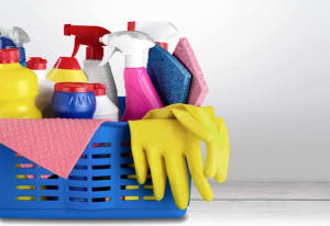 North Hollywood Personal Training | Are you cleaning your home with these toxins?